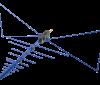 20MHz - 6GHz EMC Reference Antennas  OEMC-20M-60