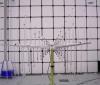 80MHz-1.5GHz EMC Stacked Logarithmic-Periodic Test-Antenna OVLA-00815