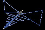 20MHz - 6GHz EMC Reference Antennas  <br> OEMC-20M-60